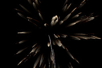 Zooming Fireworks