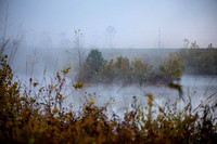 Foggy day in the Oxbow